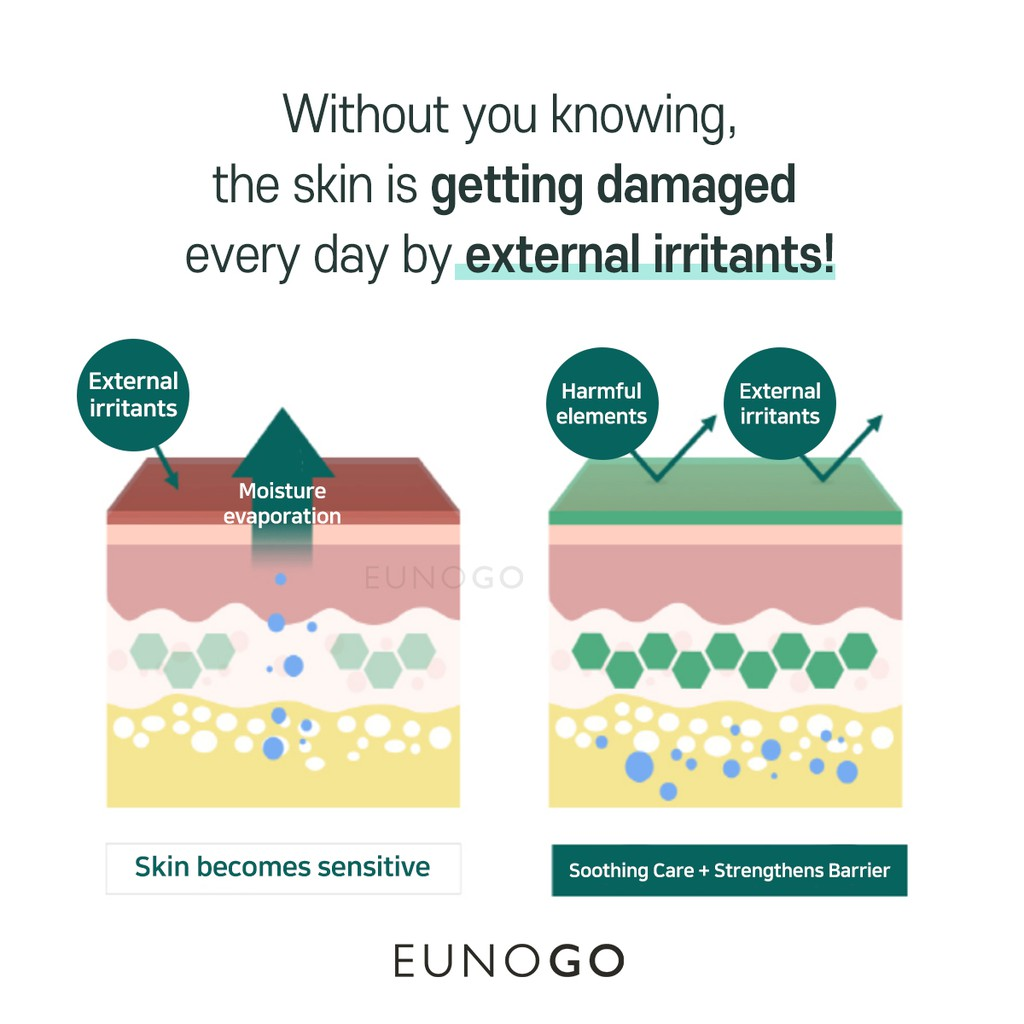 [EUNOGO] Patchholic Pure Energy Cica Plus Ampoule 30ml // Soothing Moisturizing Calming Korean Cica Ampoule // Centella Asiatica Leaf Extract and Panthenol