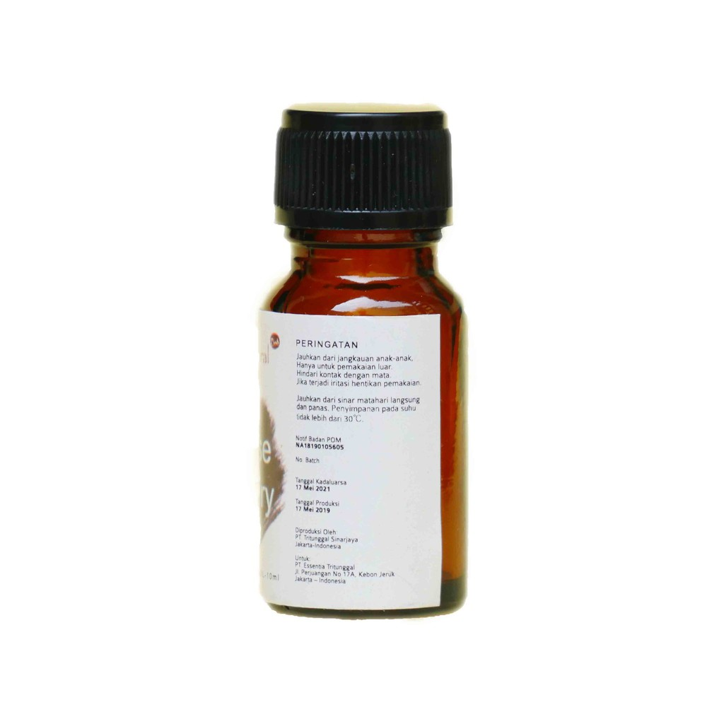 Natural - Essential Oil Rosemarry Rosmarinus Officianalis 10 Ml | aromatherapy humidifier diffuser